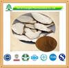 BV Certificated High Quality Pure Natural Angelica Dahrica P.E. Powder