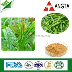 10~50% EGCg Green Tea Extract/20~80% Catechins/Camellia sinensis