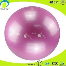 2015 high quanlity gym exercise ball