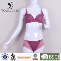 Comfortable New Style Best Quality Nylon Bra Lingerie for Sexy Ladies