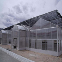 Small High Quality Film Green House