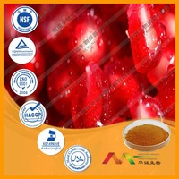 NSF-GMP Supplier provide health products Pomegranate Seed Extract powder