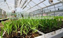 Hot sale agricultural greenhouse for hydroponics vegetable,greenhouses for tomatoes for sale/polycarbonate hollow sheet