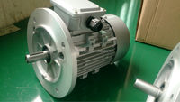 China 100% copper wire MS ac electric motor 0.18hp