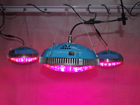 2015 ebay best selling Super ufo 225w full spectrum led grow lights UFO led grow lighting 75X3W led grow light
