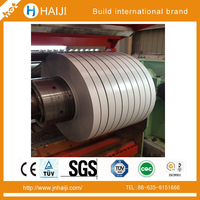specialized production High quality prepainted galvanized iron steel strip coil