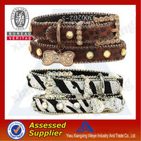 New product novelty plastic dog collar with leash attached in many size