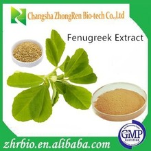Best quality Fenugreek Seed Extract 5:1 10;1 20:1 and Trigonelline 60% -98%