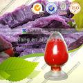 los alimentos de color púrpura de patata dulce de color en polvo de extracto de la fruta