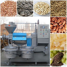 high oil extraction rate mini oil press