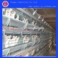 preço do competidor bateria gaiolas de galinhas poedeiras