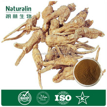 Angelica Sinensis Extract/ Dong Quai Powder