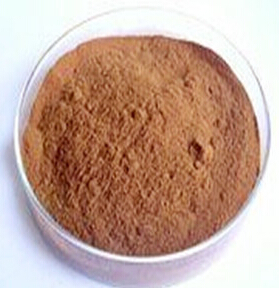 High quality Natural Shitake Mushroom Extract in bulk in health & medical 20:1