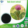 Hot selling Red clover extract with superior quality, factory supply red clover extract