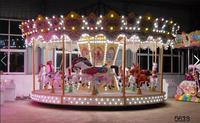 amusement rides bondage equipment