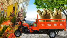 chinese popular new style 150cc 200cc air cooled petrol powered advertising trike