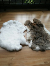 Factory Direct Supply Rabbit Hide Pelts For Wholesale