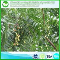 wholesale neem oil/neem oil price/parker neem oil