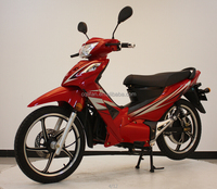 African Rain-Proof Electric motorcycle cub type