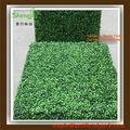Plástico cerca de folhas artificiais( sj16009)