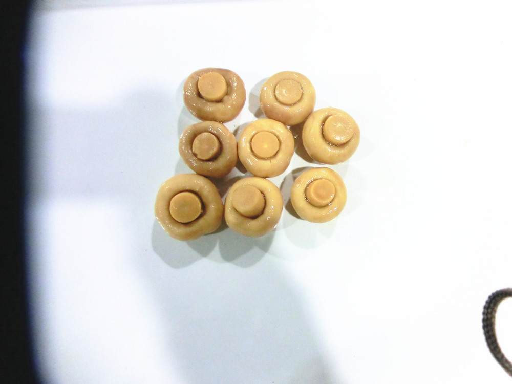 Canned Mushroom 425ml x 24 best quality