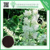2015 hot selling products 100% natural black cohosh powder extract 8%