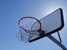 USA Market Outdoor Basketball Ring/Hoop