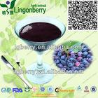 orgânica wild blueberry suco concentrado