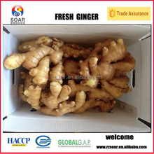 Ginger import in Vietnam