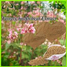 Natural Tartary buckwheat Extract/buckwheat seed extract