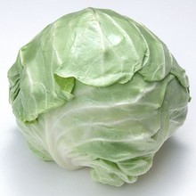 2015 new crop delicious fresh cabbage