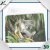 custom 3d lenticular wildlife picture card design