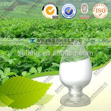 certified 100% organic stevia