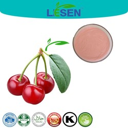 Manufacturer Supply Acerola Cherry Fruit Powder, Good Water Solubility