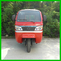 Top Grade Cheap Powerful Cargo 3 Wheel Tricycle/ Mini Dumper Motor Tricycle Made In China