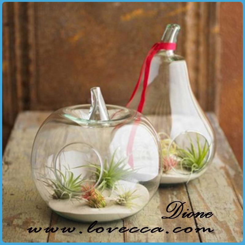 verre transparent pot de fleur globe de verre suspendus