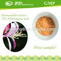 Extrato natural da planta extrato de madressilva 98% de ácido clorogênico para anti- tumor