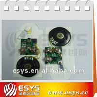 Sound recording Ic Chip for Card