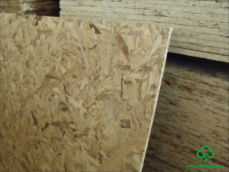 China 25mm osb sip panel hot sale buy china 25mm osb sip panel osb sip panel osb sip panel hot for Sip panels for sale