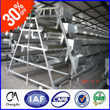 A H Type 96 chicks per set chicken bird cage egg chicken house design for layers