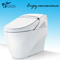 north american style two piece cupc approved siphonic toilet