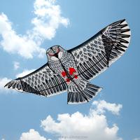 Eagle black-eared kite