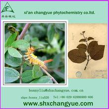 pharmaceutical raw materials quinine powder