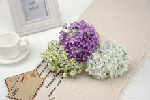 BE02 Preserved Hydrangea Artificial Dried Flowers Decoration Wedding Events Suppliers