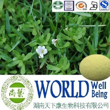 Hot sale Bacopa Moniera extract/Bacosides 40%/Bacopasides/Stimulate activity plant extract