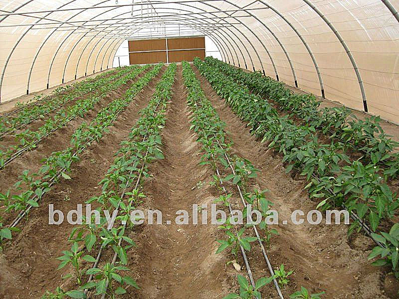 Agriculture greenhouse drip irrigation for farm irrigation - Increase greenhouse production cost free trick ...