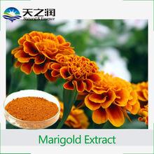 Herbal extract type corn silk extract/marigold extract lutein zeaxanthin from marigold