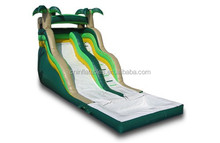 the most popular inflatable tropical wet/dry slide