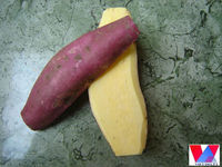 Fresh Yellow Sweet potato