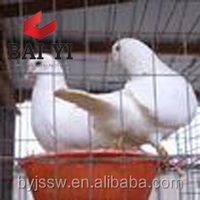 Pigeon Breeding Cage for Sale